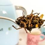 Sportování, antioxidanty a zelený čaj. Jak spolu souvisí?