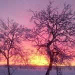 Blog DNK. Z Jizerek za polární kruh