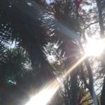 Blog DNK. Od tříkolky k Trekovi aneb z Ještědu do Brazílie